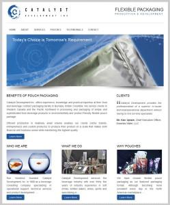 website-screenshot-catalyst-development